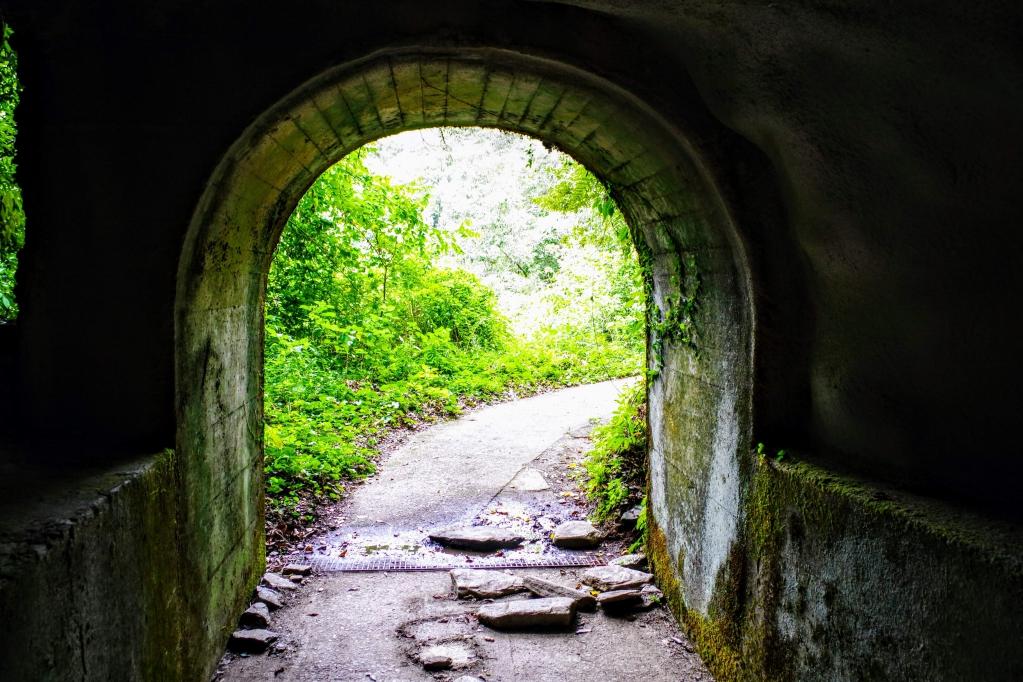つがねの滝トンネル出口