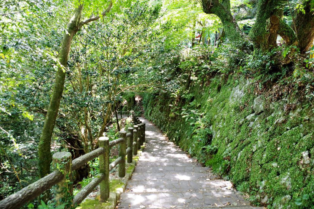轟の滝へ続く階段