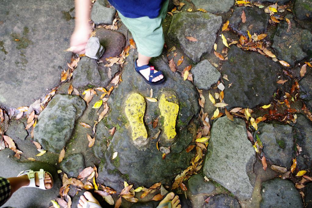 耳なり岩足型